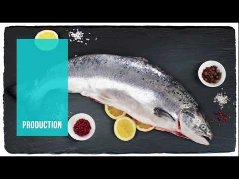 ICECO fish video presentation