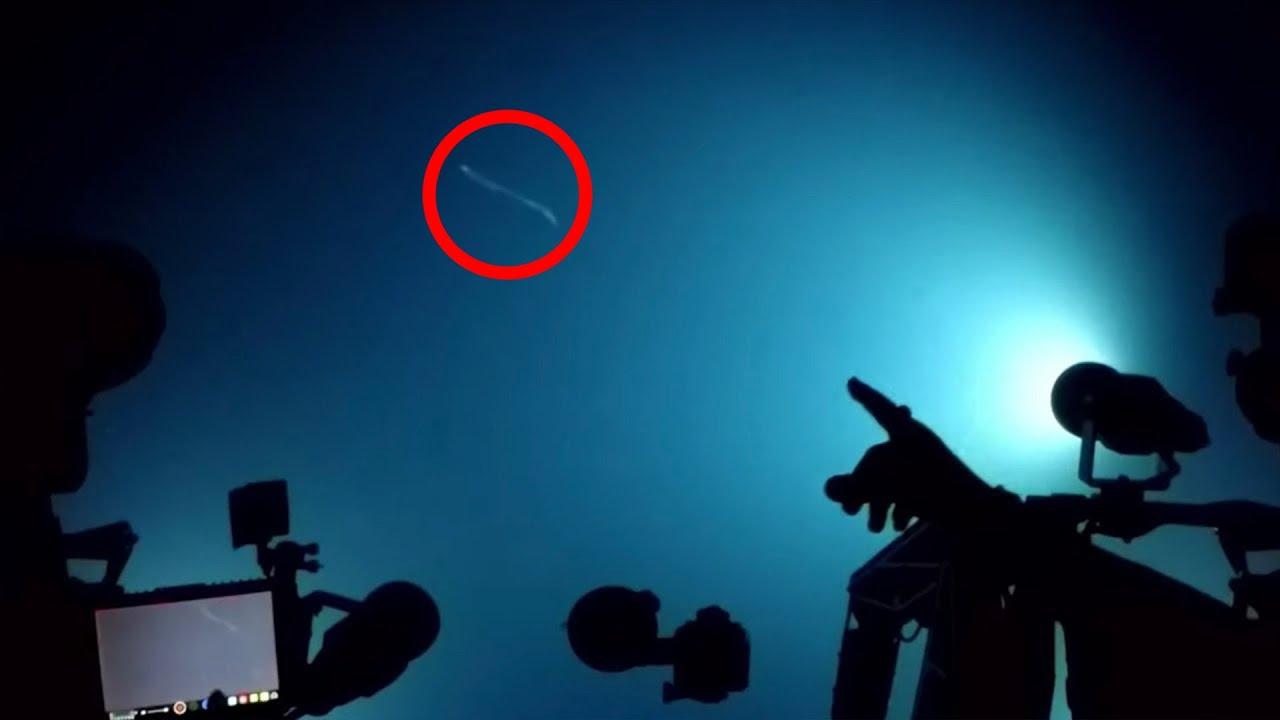 """""""จุดเอเลี่ยน"""" Ocean Twilight Zone สถานที่ใต้ทะเลลึก ที่ค้นพบสุดสัตว์แปลกประหลาด"""