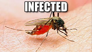 My Sister Got Malaria ....(And I Didn't) - Smarter Every Day 167