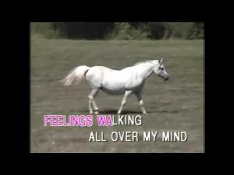 Funny Familiar Forgotten Feelings karaoke