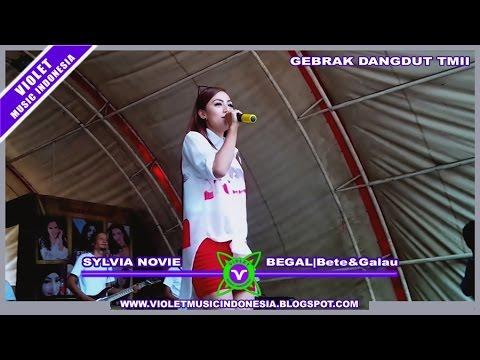 Sylvia Novie - BEGAL Bete&Galau | Karya Cipta : Andry Haq | GEBRAK DANGDUT TMII Mp3