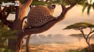 Animali obesi: il corto animato è un cult
