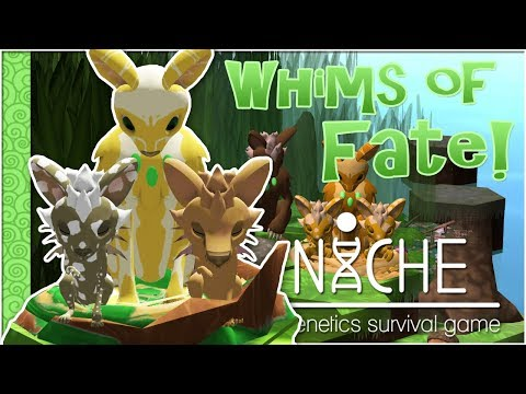 A Lucky Abundance of Twins!! 🍀 Niche: Whims of Fate Challenge - Episode #3