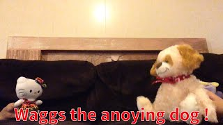 The Crazy Plush Show !! ( Wags the annoying Dog ! )