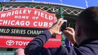 Cubs Fans Elated After World Series Win