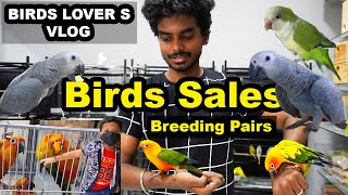 BIRDS FOR SALES | PET SHOP REVIEW | BIRDS and Dogs Accessories | Delivery Available