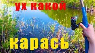 ЛОВЛЯ КАРАСЯ В МАЕ НА ПОПЛАВОК. Рыбалка на ПРУДУ