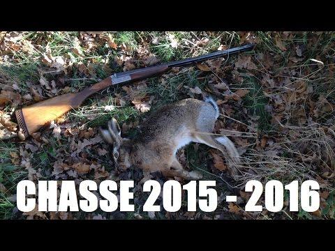 Chasse: Saison 2015 - 2016 (grand Gibier Et Petit Gibier, Tir D'un Gros Sanglier En Battue)