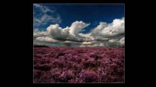 John McDermott - Wild Mountain Thyme