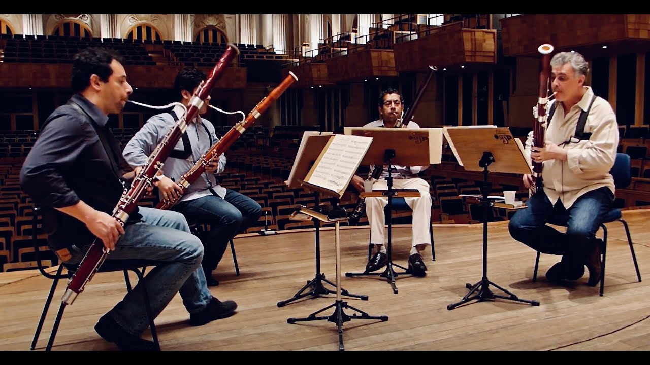 TAKE FIVE - Camaleon Bassoons
