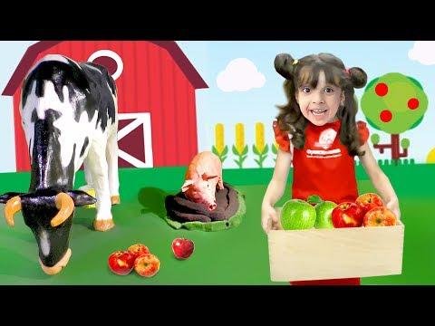 Домашние животные для детей - На ФЕРМЕ! ПРОФЕССИИ для детей: Фермер. Собирают овощи и фрукты.