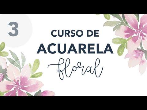Pintar FLORES con ACUARELAS principiantes - Curso de acuarela floral (Parte 3/4)