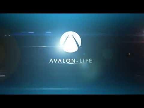 Avalon - Life :: Intro #10