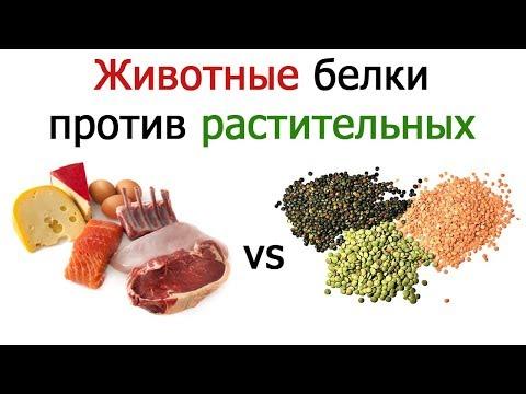 Научно о растительном питании