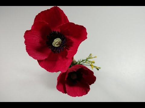 Let's make a beautiful and diy poppy flower with crepe paper
