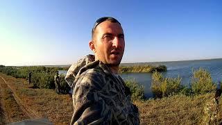 охота на утку 2017.открытие. иж 54.охота с утиными чучелами.