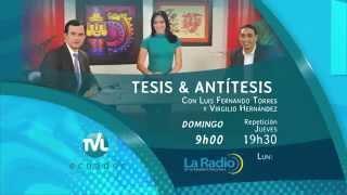 Tesis y Antítesis   Promo Programa 67   Salvaguardias arancelarias