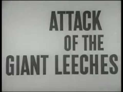 Attack of the Giant Leeches [AKA She Demons of the Swamp] (1959) - Public Domain Horror