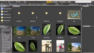 1. Знакомство с Adobe Photoshop CS5 ( 1.1 Основные модули )