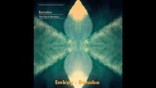 My Favorite Electronica, Ambient 8