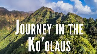 Journey in the Koolau Mountains