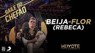 KOYOTE - Beija-Flor/Rebeca (Álbum Baile do Chefão)