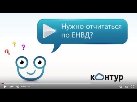 Бухгалтерская отчетность по ЕНВД  2НДФЛ ИП