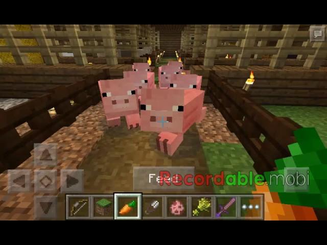 minecraft episode12(transfer sapi dan domba)