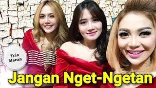 Jangan Nget Ngetan - Trio Macan Whaton Video Version