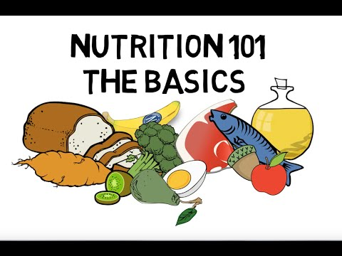 Basic Nutrition and Macro Nutrients Video Animation by Train With Kane