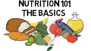 Basic Nutrition and Macro - Nutrients Video Animation by Train With Kane