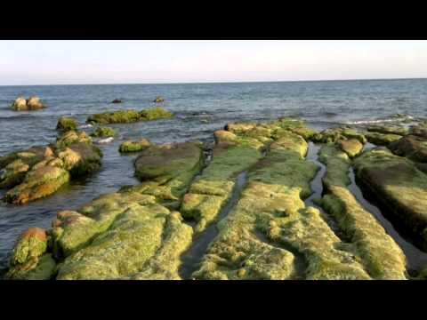 Chiều trên biển cổ thạch