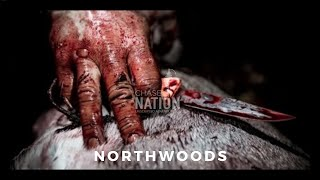 BIG WOODS Public Land BOW HUNT - WISCONSIN Northwoods, Bayfield Co