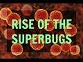 Antibiotic Resistance – Aka, Rise of The Superbugs
