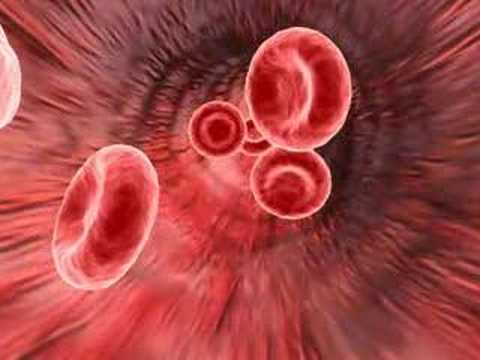 Medical animation of red blood cells
