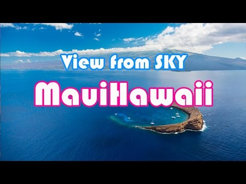 Vising Maui Hawaii from Sky and Under Water - flight search - under water camera