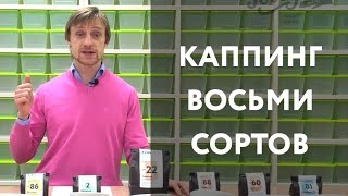Каппинг восьми сортов кофе(, 2016-03-14T12:08:56.000Z)