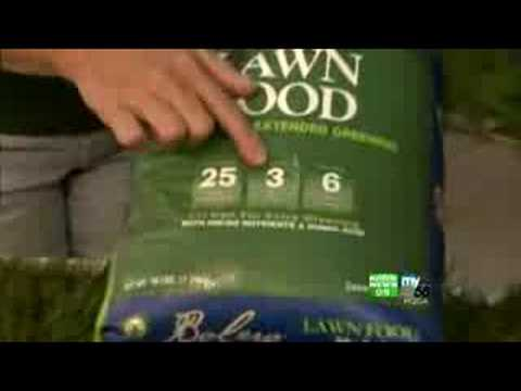 Prepare Lawn For Winter prepare your lawn for winter - youtube