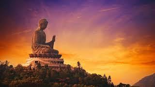 Nhạc Thiền Tịnh Tâm - Bản hoà ca của sự THƯ THÁI, AN NHIÊN, TỰ TẠI