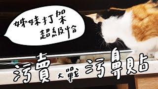 全台手播【庭閃der】污家姊妹鬥!污賣大戰污鼻貼