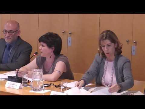 Consell Plenari del Districte de Ciutat Vella 12/5/2016