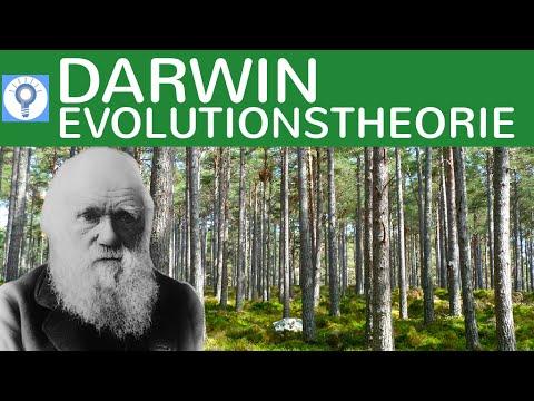 Darwins Evolutionstheorie