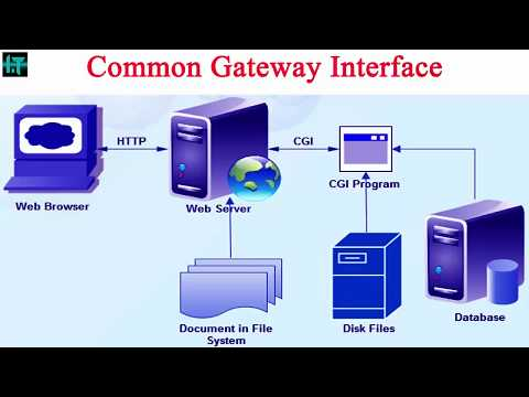 Common Gateway Interface(CGI) || working process of  Common