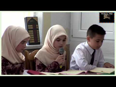 How Bosnian Muslims read the Qur'an ??