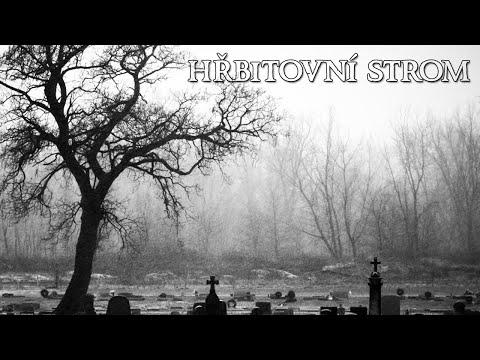 hrbitovni-strom-kratky-pribeh-loremasters