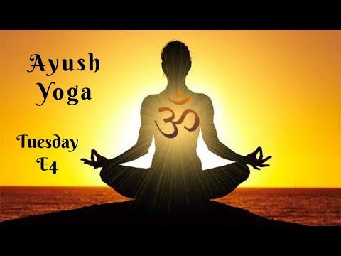 ayush yoga  day wise  tuesday  e4  youtube