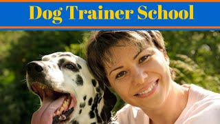 Dog Trainer School - How To Become A Dog Trainer