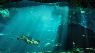 D Ocean Pioneer - immersive underwater voyage experience