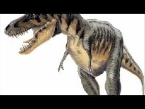 Dinosaur Zodiax August
