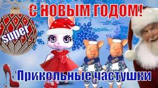 Частушки прикольные в Новый год свиньи 2019🐖частушки веселые новогодние🐖Свинья 2019